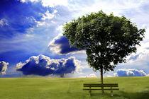 Der Baum by josslin