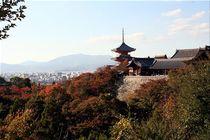 Japan - Kyoto by Frank Seidel