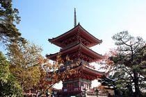 Japan - Kyoto - Tempel Pagode von Frank Seidel