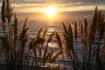 Frankreich - Sonnenuntergang am Atlantik von Frank Seidel
