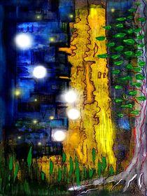 Sommernacht von Thomas Bader