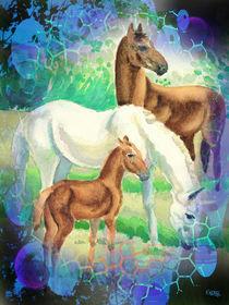 Pferdefamilie - Horse Family von Norbert Hergl