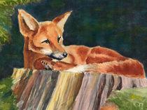 Fuchs auf Baumstamm von Norbert Hergl