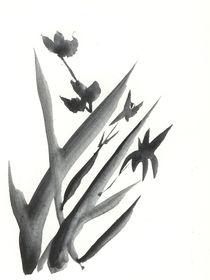 Blume von Norbert Hergl