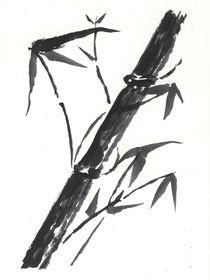 Bambuszweig von Norbert Hergl