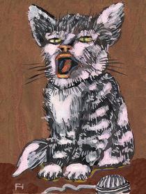 Miau! von Norbert Hergl