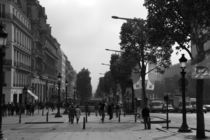 Champs Elysees by Frank Walker