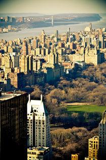 Central Park von Frank Walker