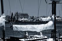 Sailing von Frank Walker