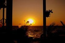 Blick zum Meer von laakepics
