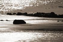 Strandgeflüster von Jana Behr