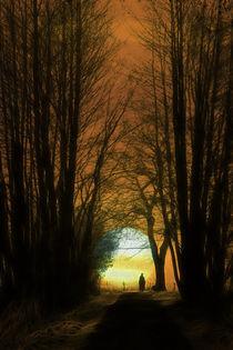 Lichtgestalt von Jana Behr