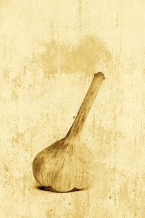 Knoblauch by Jana Behr
