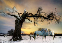 Winterzeit von Klaus Lensch