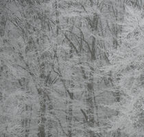 Zuckerwattenbäume von wachsma
