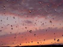Regentropfen bei Sonnenuntergang von wachsma