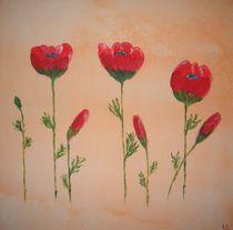 Mohnblumen von Ulrich Hohle