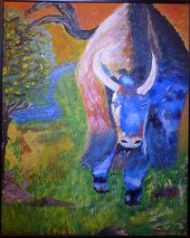 Stier von Ulrich Hohle