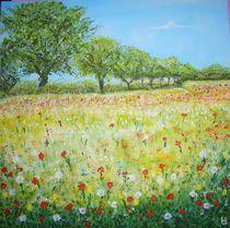 Sommerwiese von Ulrich Hohle