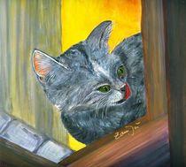 Katze im Fenster wartet auf Futter von zamju