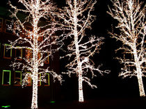 leuchtende Weihnacht by lillihamburg