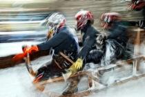 Hornschlittenrennen by Martin Gebhardt