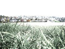 grüne stadt von christina paddags