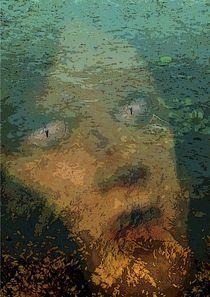 Geschöpfe - Moorfee von Wolfgang Schwerdt