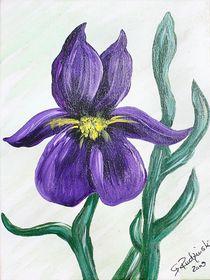 Iris in Acryl von Roswitha Rudzinski