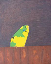 Wellensittich Jacob `89 von Reinhold Klee