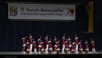 Deutscher Vizemeister 2010 Feuerio Gemischte (18) by Fred Rudzinski