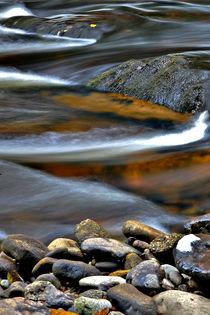 Wilder Fluss Vydra von Hana Abel