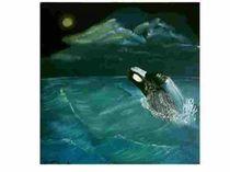 Orca by Susanne Schick