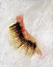 ´Relief 2´ aus 2005 von lijon