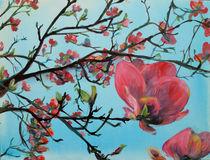 Frühling im Magnolienbaum von Renée König