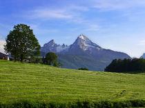Der Berg ruft von pointofview