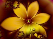 Blütenzauber von Ilona Wargowski