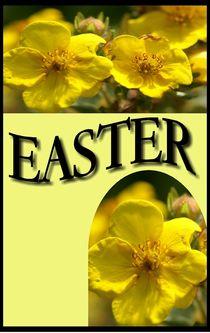 Easter von Rosi Lorz