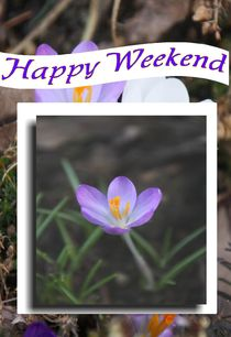 Happy Weekend von Rosi Lorz