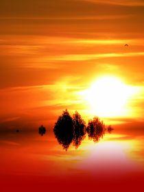 Roter Sonnenuntergang von tcl