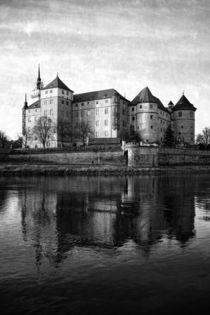 Schloss Hartenfels by Falko Follert