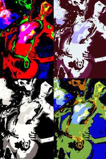 Pop Art Akt Poster 2 by Falko Follert