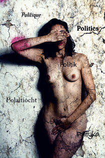 Politics-Polaitíocht-Politique-Polityka-Politi von Falko Follert