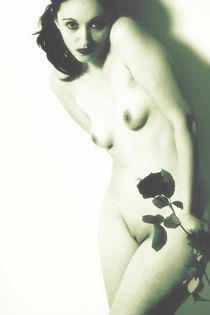 La rose de l´amour Aktfotografie von Falko Follert