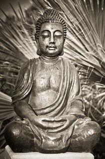 Buddha grau by kmfoto
