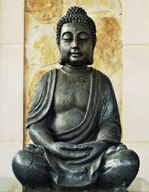 Buddha nature by kmfoto