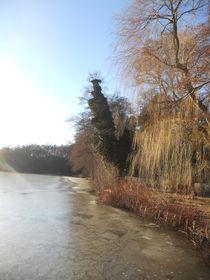 Eiszeit im März von biene