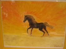 Pferdestärke von elke anita dewitt