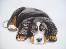 Hund von Angelika Wegner