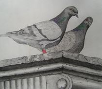 Tauben von Angelika Wegner